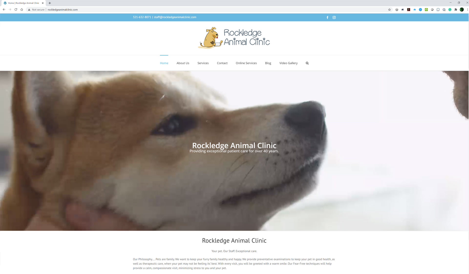 Rockledge Animal Clinic Website